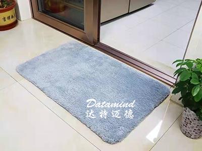 卫生间门口吸水地垫